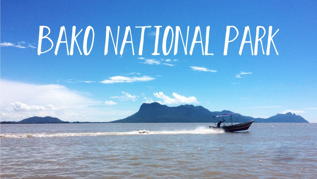 Why you'll visit Bako National Park